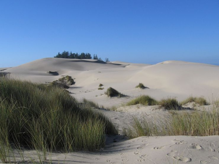 USA_Oregon_Dunes